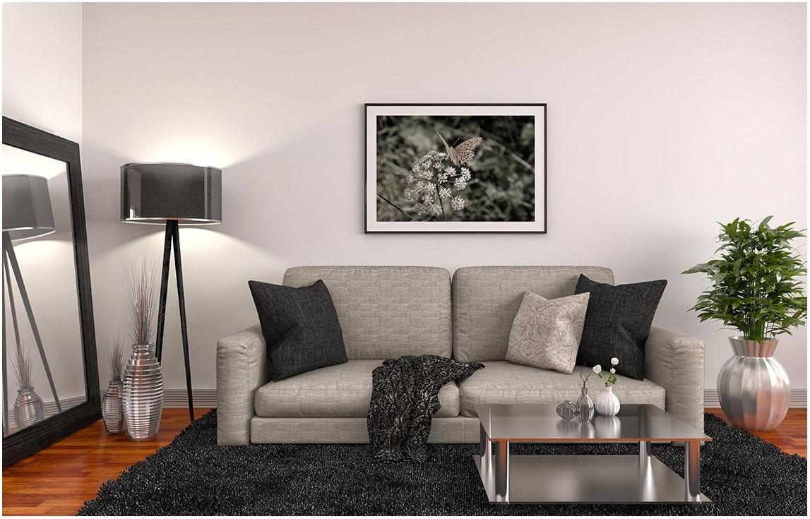 Best Asian Paint Color For Living Room