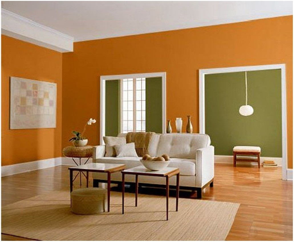 Home Interior Living Room Painting Color Combinations