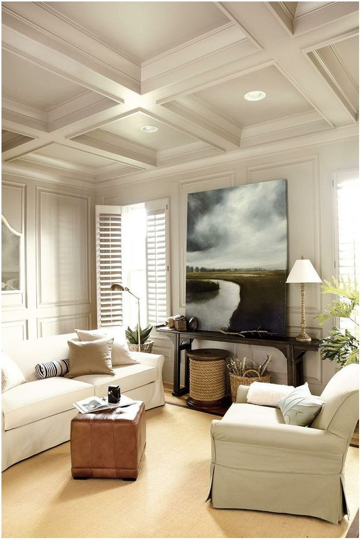 Living Rooms With Painted Ceilings