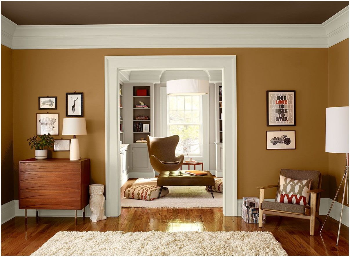 Warm Brown Paint Colors For Living Room