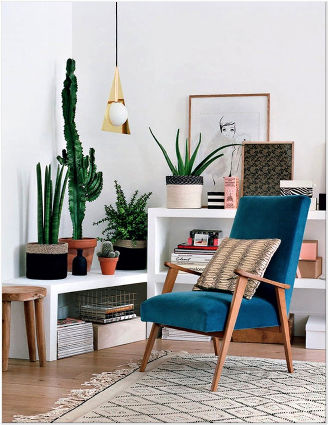 Modern Living Room Ideas With Plants