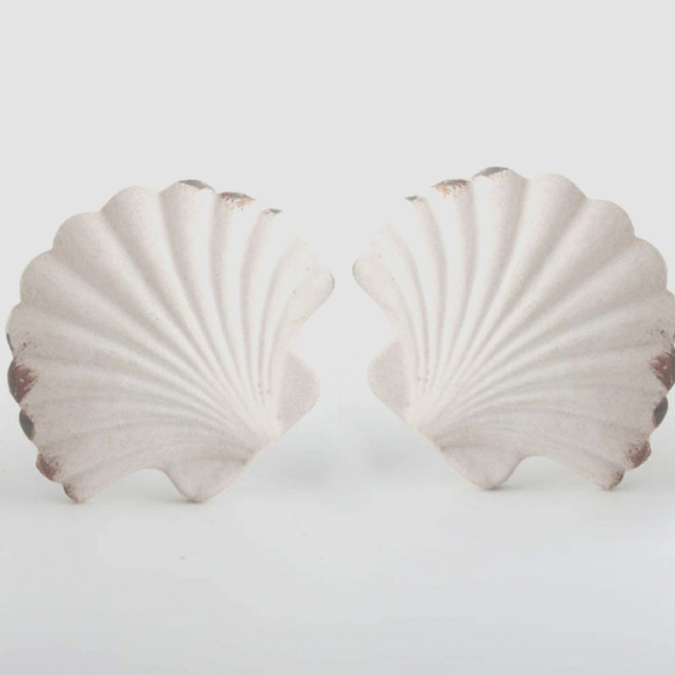 Seashell Cabinet Knobs and Pulls